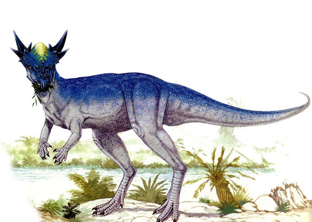 Stygimoloch, Foto: sauropedia.wordpress.com