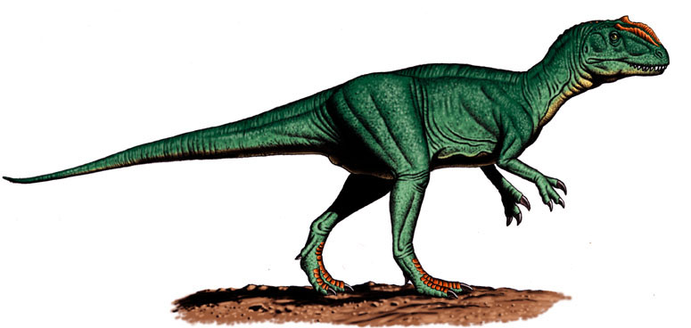 Szechuanosaurus, Foto: geocities.ws