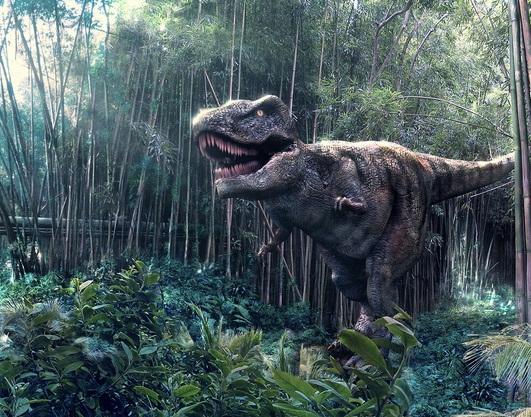 Tyrannosaurus, Foto: hdwallon.blogspot.ro