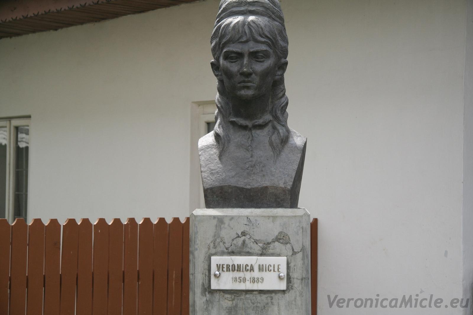 Veronica Miclea1
