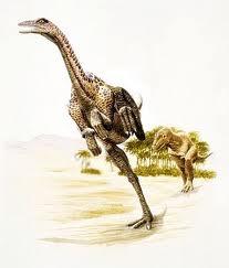 Anserimimus, dinozaurul din Asia, Foto: guilhermeelasmoteri.blogspot.com