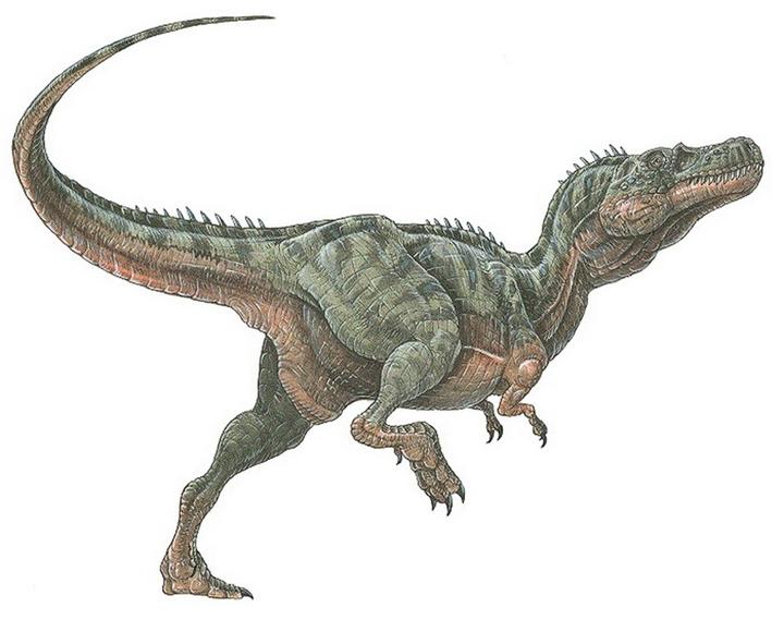 Alectrosaurus, Foto: vorotila.ru