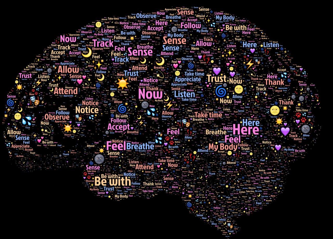 Curiozitati despre creierul uman
