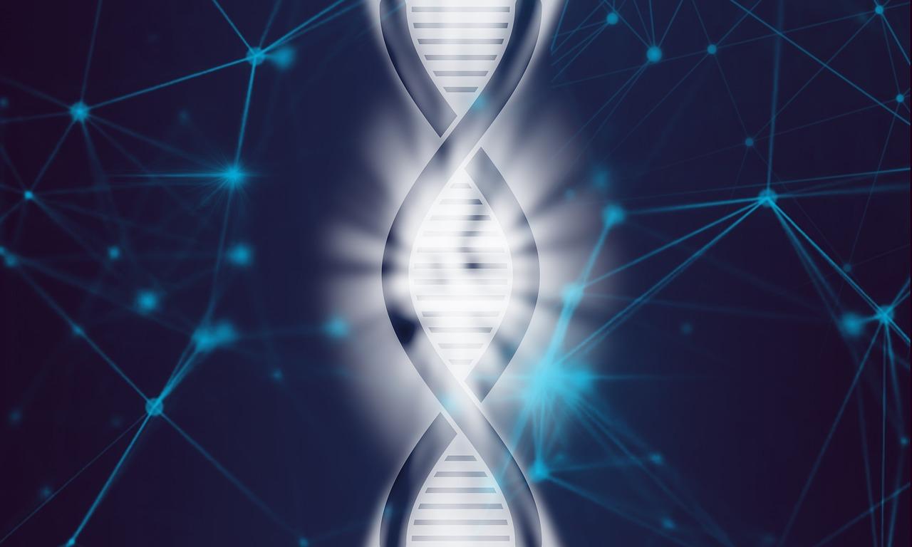 Human Genome1