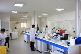 Bacteriologie (laborator)