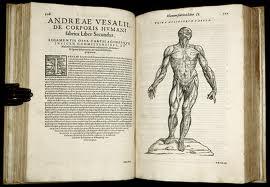 Studii de anatomie patologica in Renastere