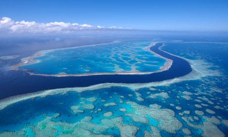 Marea Bariera de Corali, Foto: guardian.co.uk