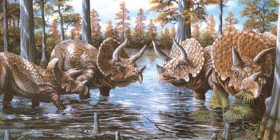 Ceratopside, Foto: explodingegg.com