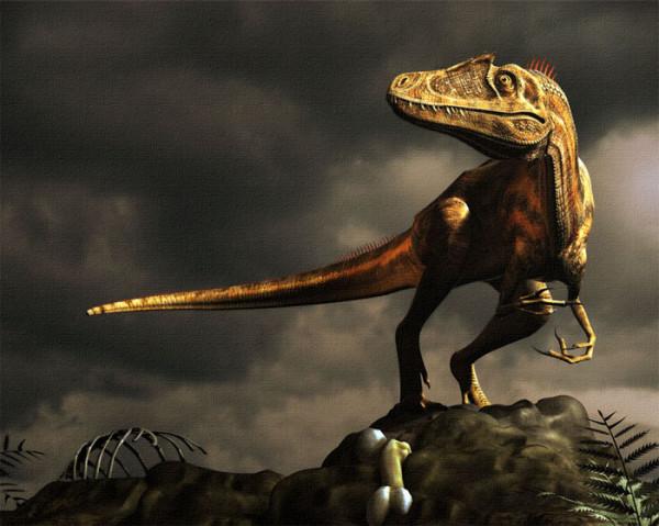 Deltadromeus, dinozaurul care a trait in aceeasi perioada si acelasi areal cu Sauroniops pachytholus, Foto: tumblr.com