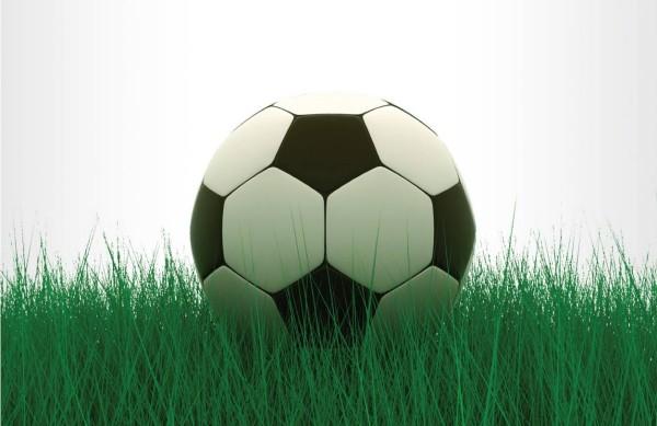 Cum este corect - mingei sau mingii