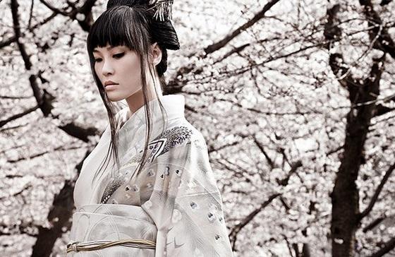 Sursa: gheise-samurai-ceai.webuda.com