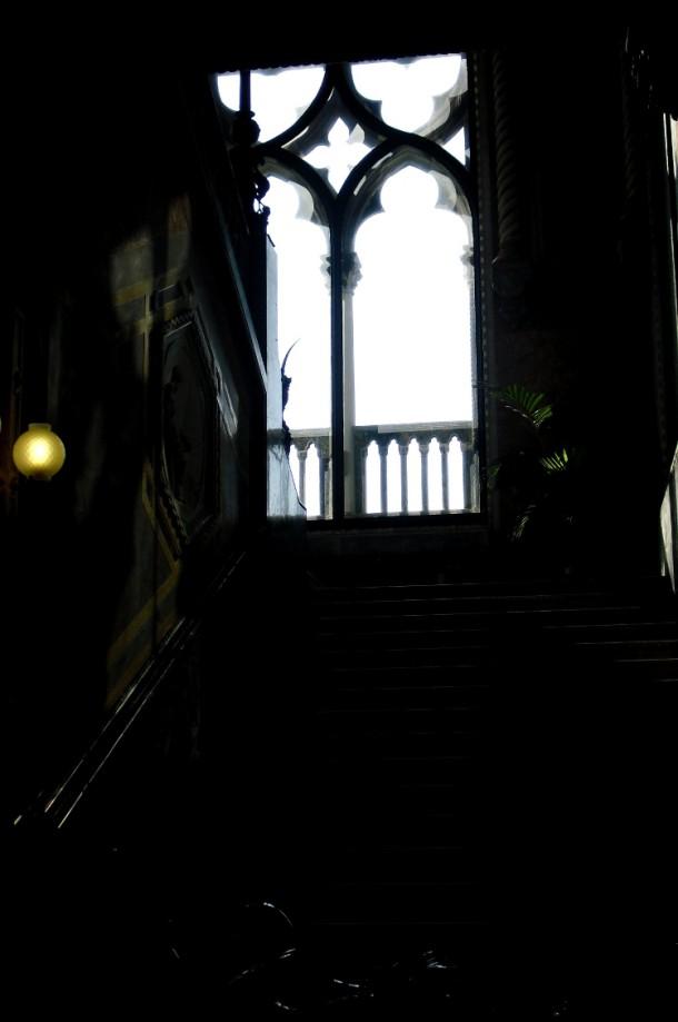 palatul franchetti 8