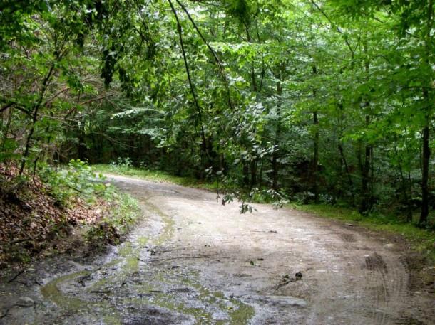 4 drumul gresit spre cetatea costesti blidaru