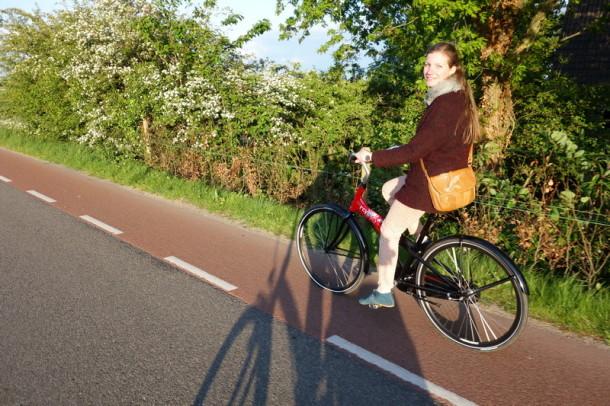 biciclete Amsterdam (11)