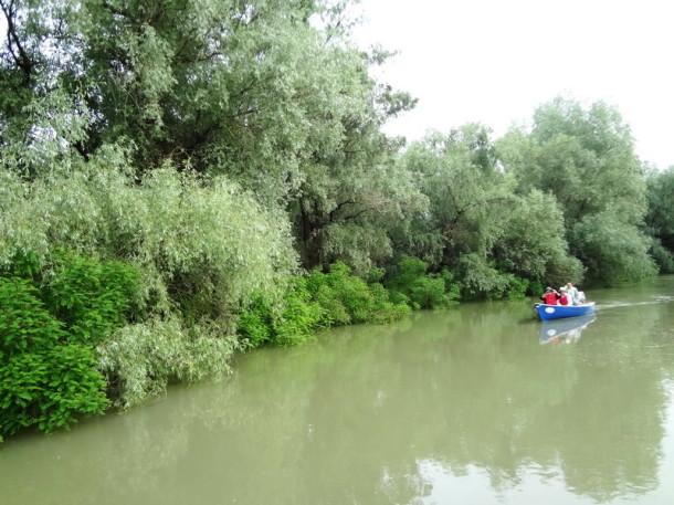 delta dunarii (11)