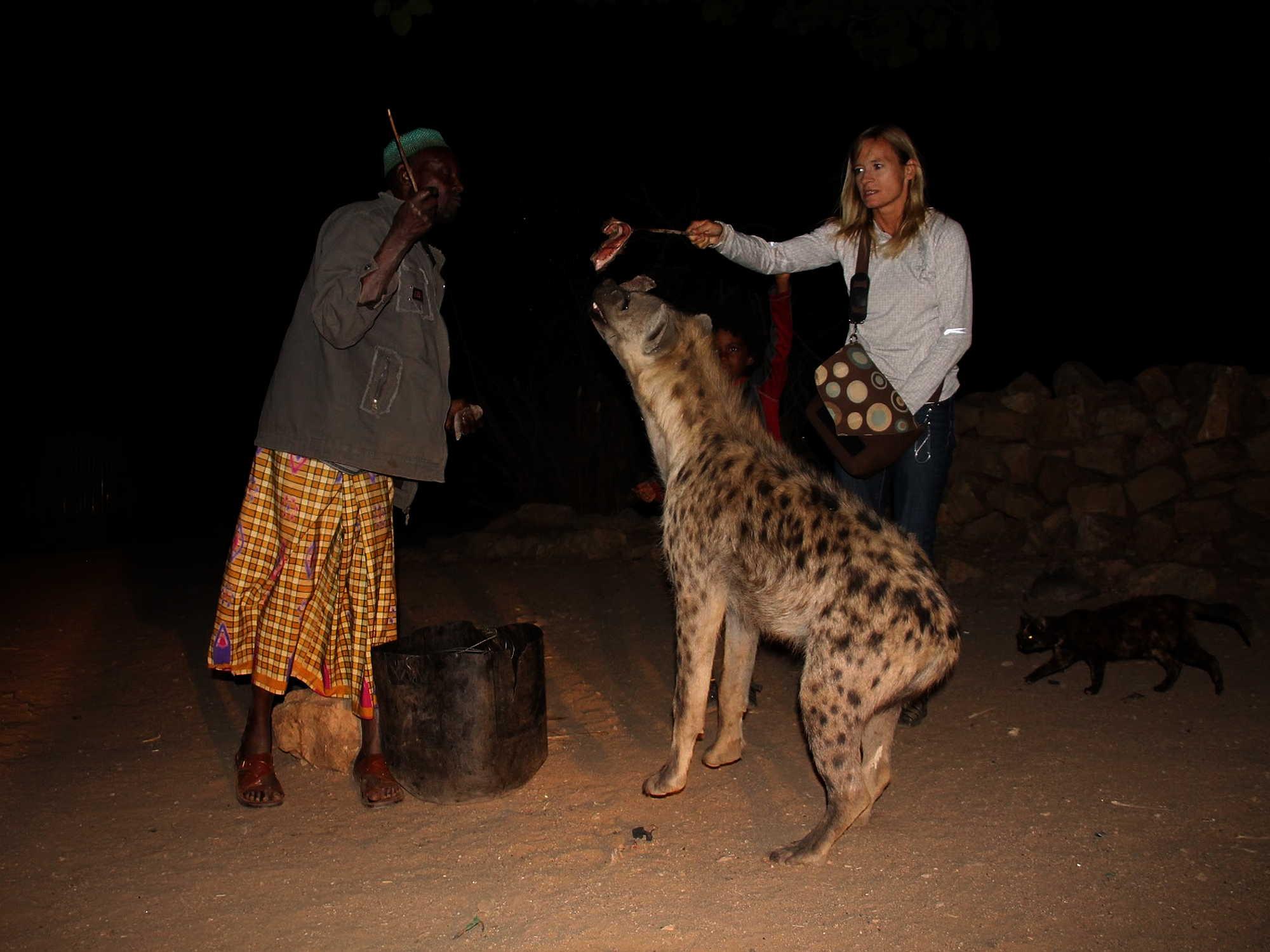 harar-hyena-man