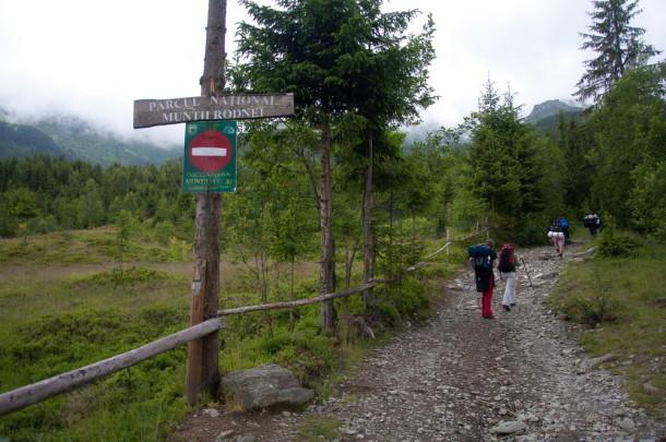 muntii rodnei (1)