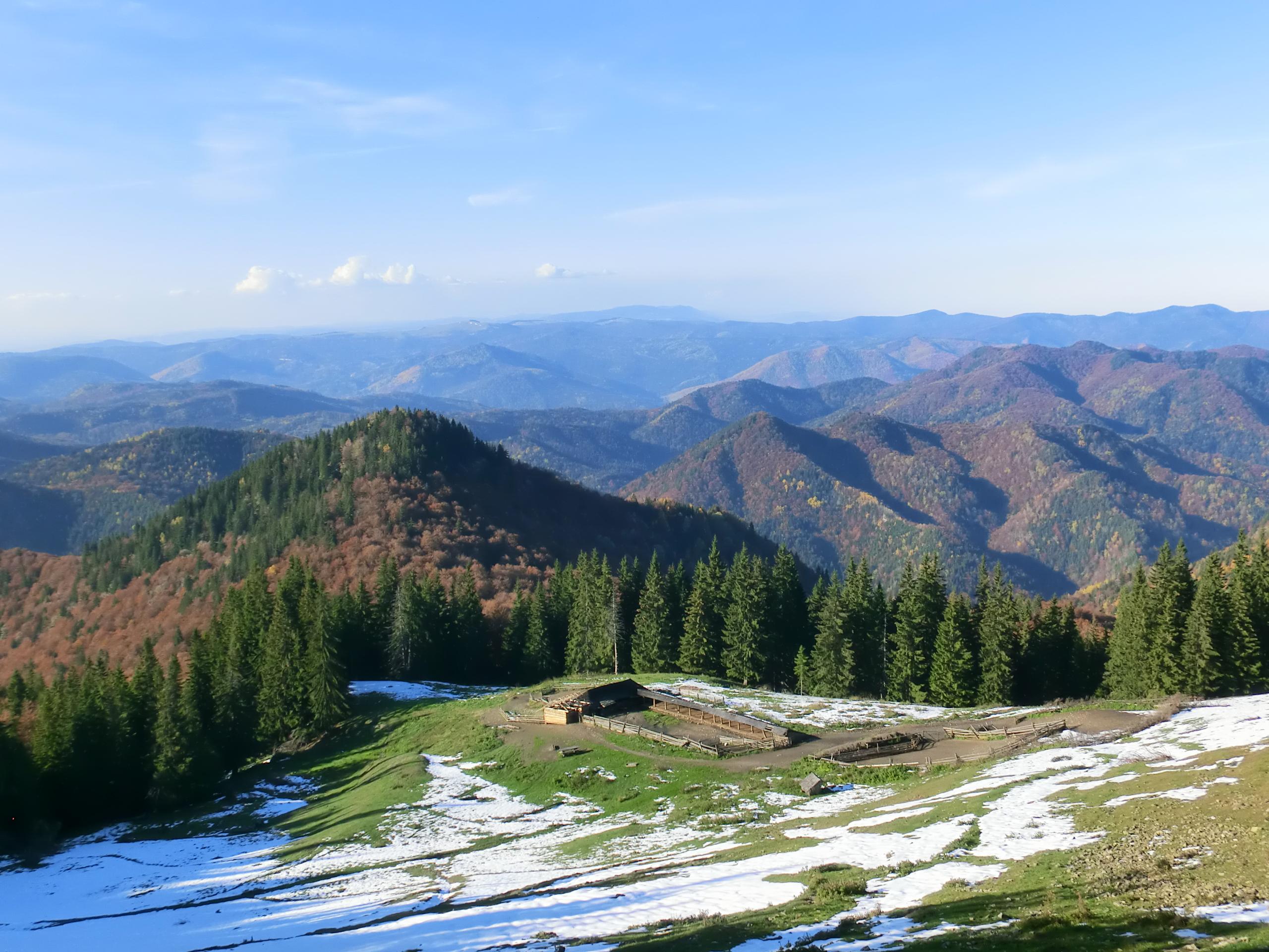 103 - 12.10.2013 - Stâna Cristianul Mare - Muntele Coza