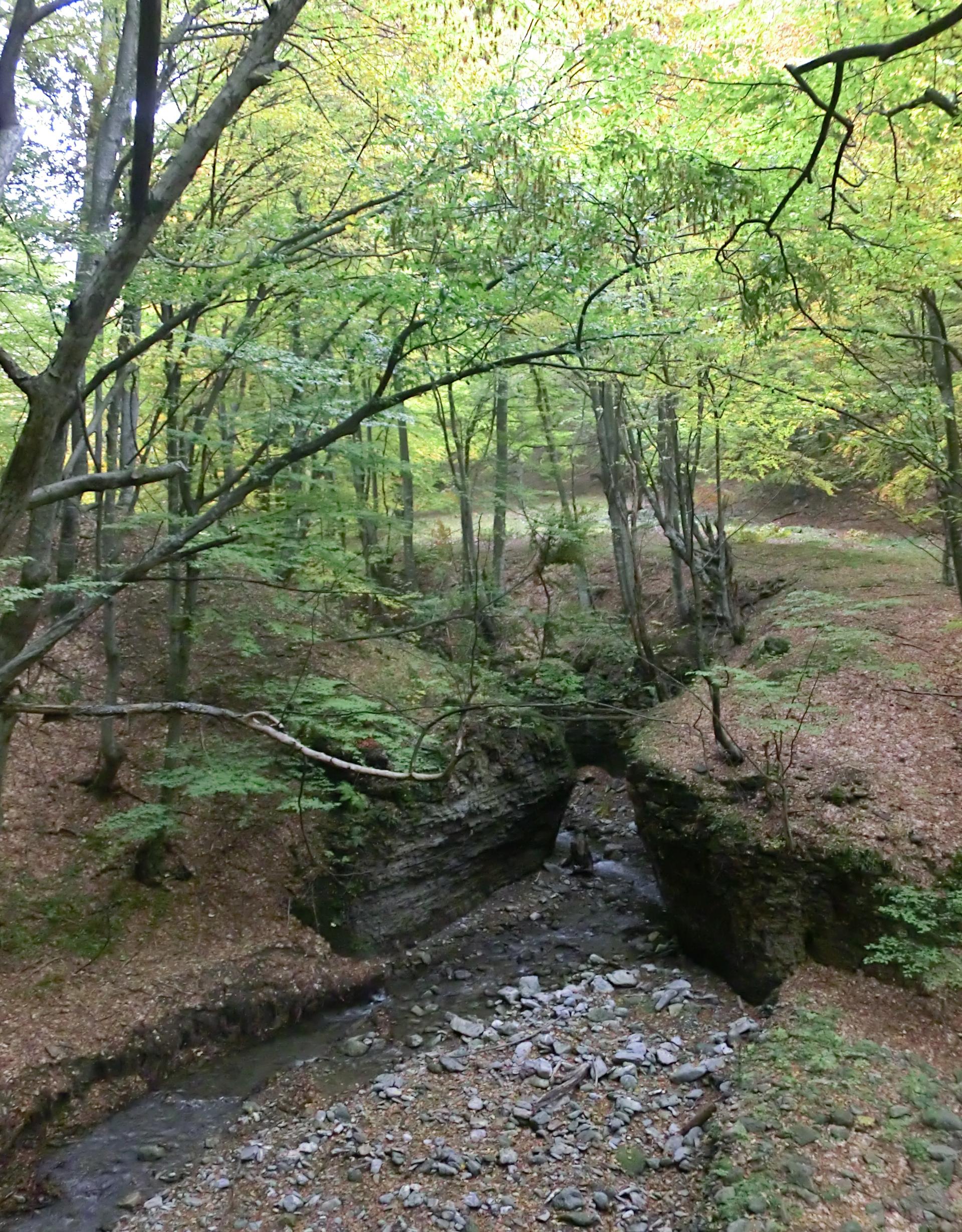 12 - 12.10.2013 - Râul Dumbrăvanu - Tură Muntele Coza
