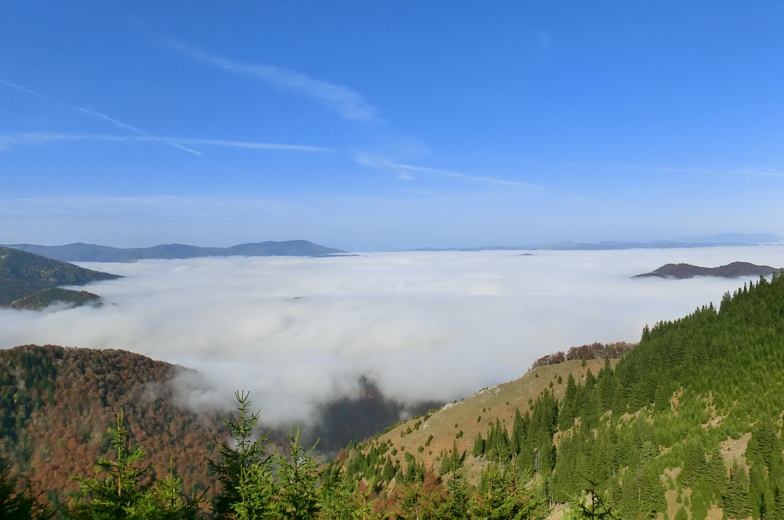 154 - 13.10.2013 - Tură Muntele Coza