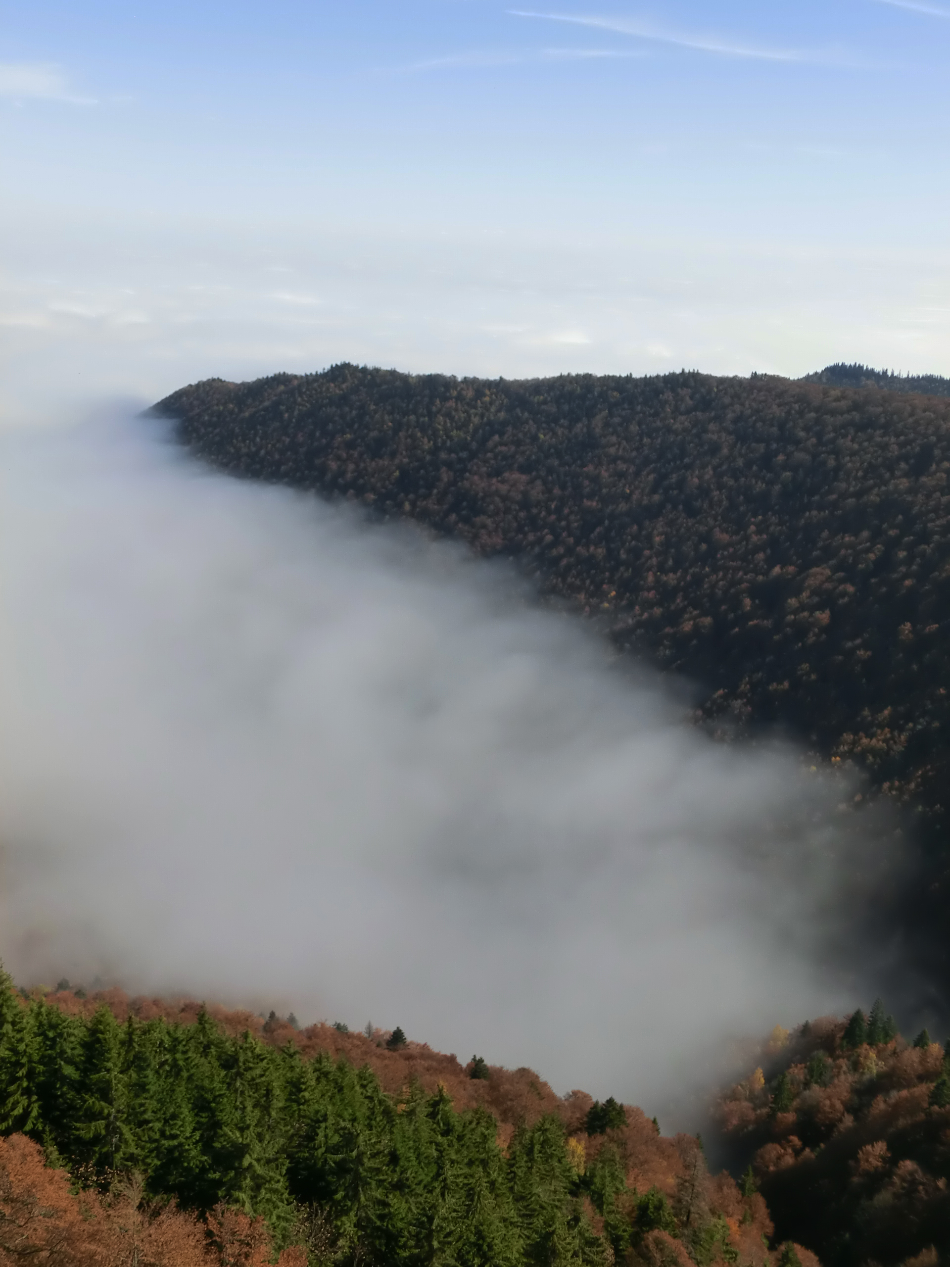 211 - 13.10.2013 - De pe culmea Gurguiata - Tură Muntele Coza