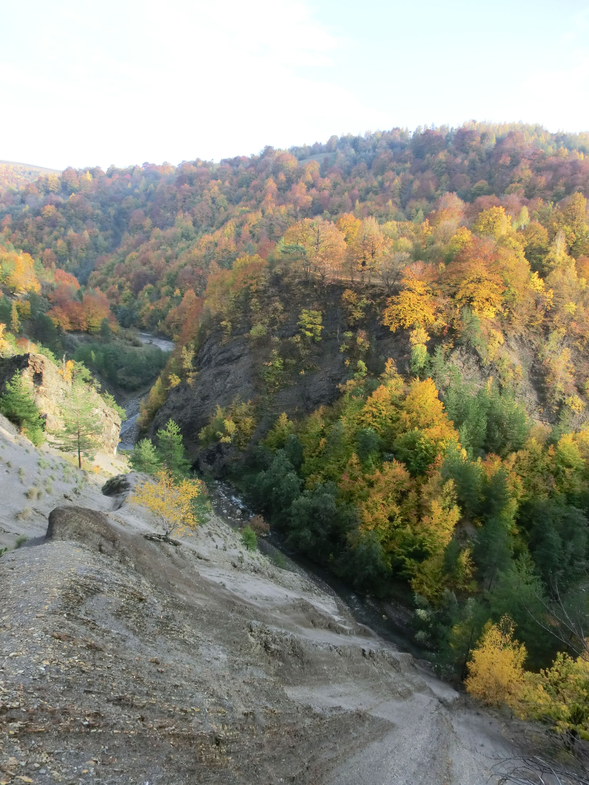 238 - 13.10.2013 - La Stramtura - Tură Muntele Coza