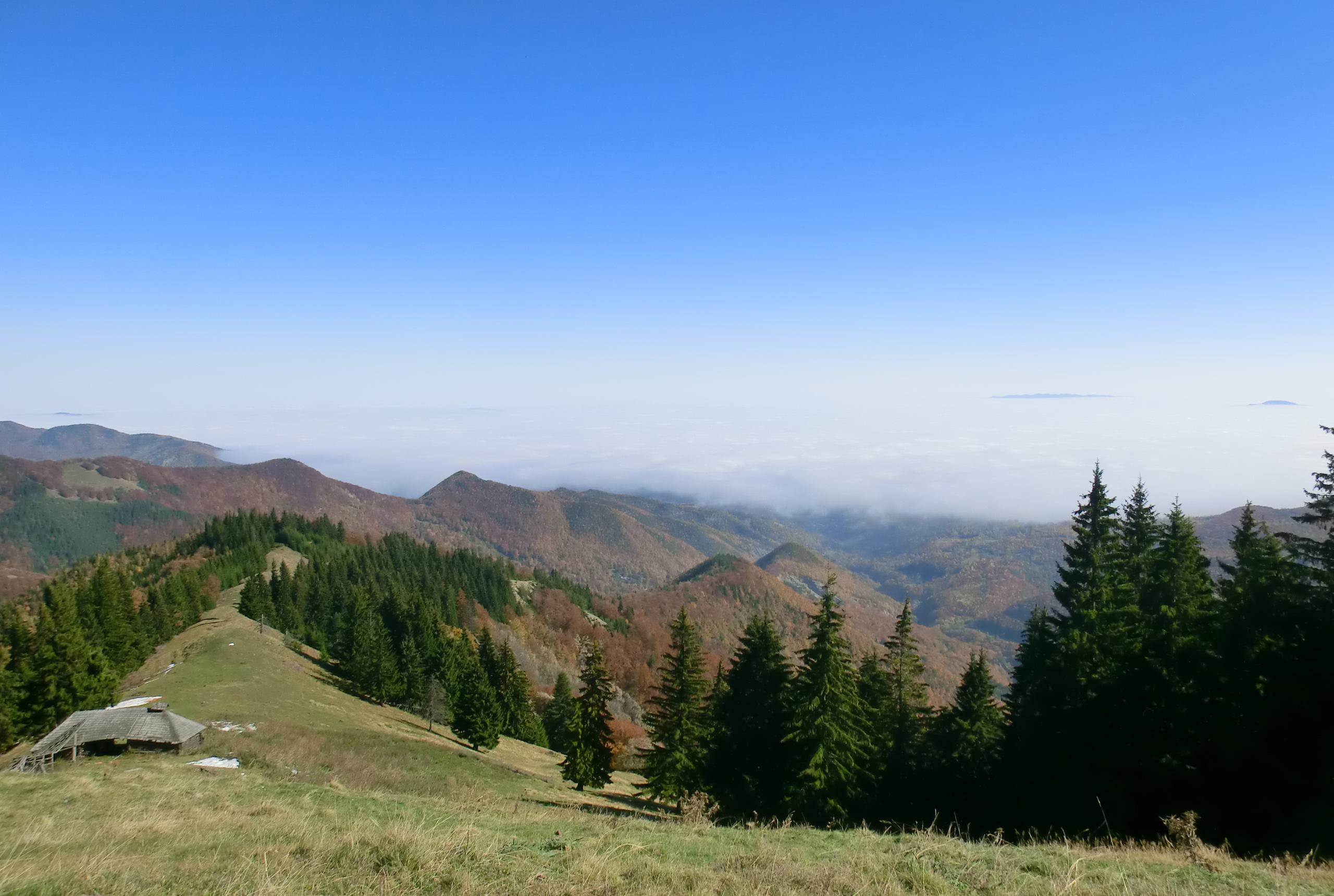 46 - 12.10.2013 - Stâna Cârnituri - Tură Muntele Coza