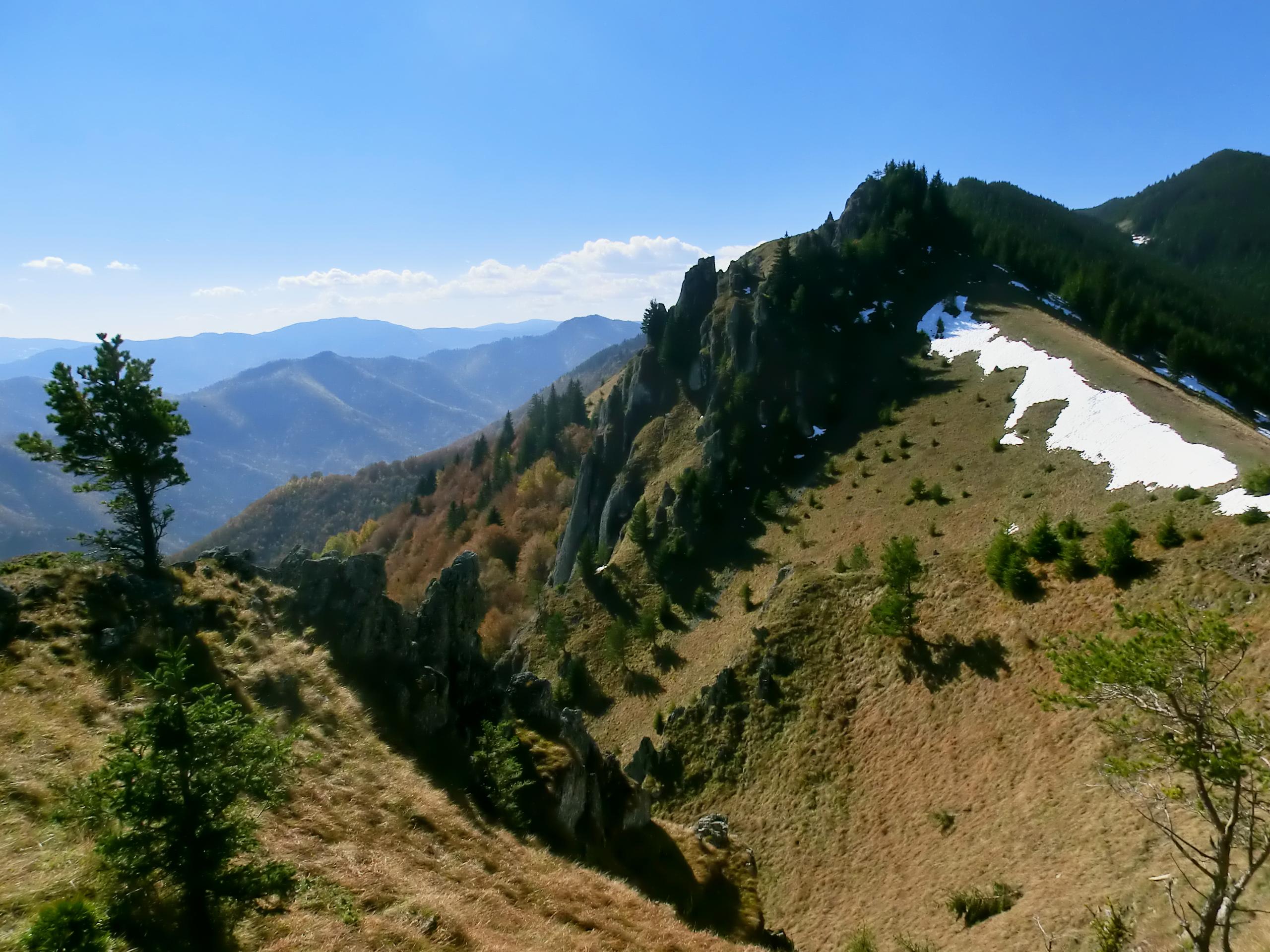 50 - 12.10.2013 - Turnurile Cozei - Tură Muntele Coza