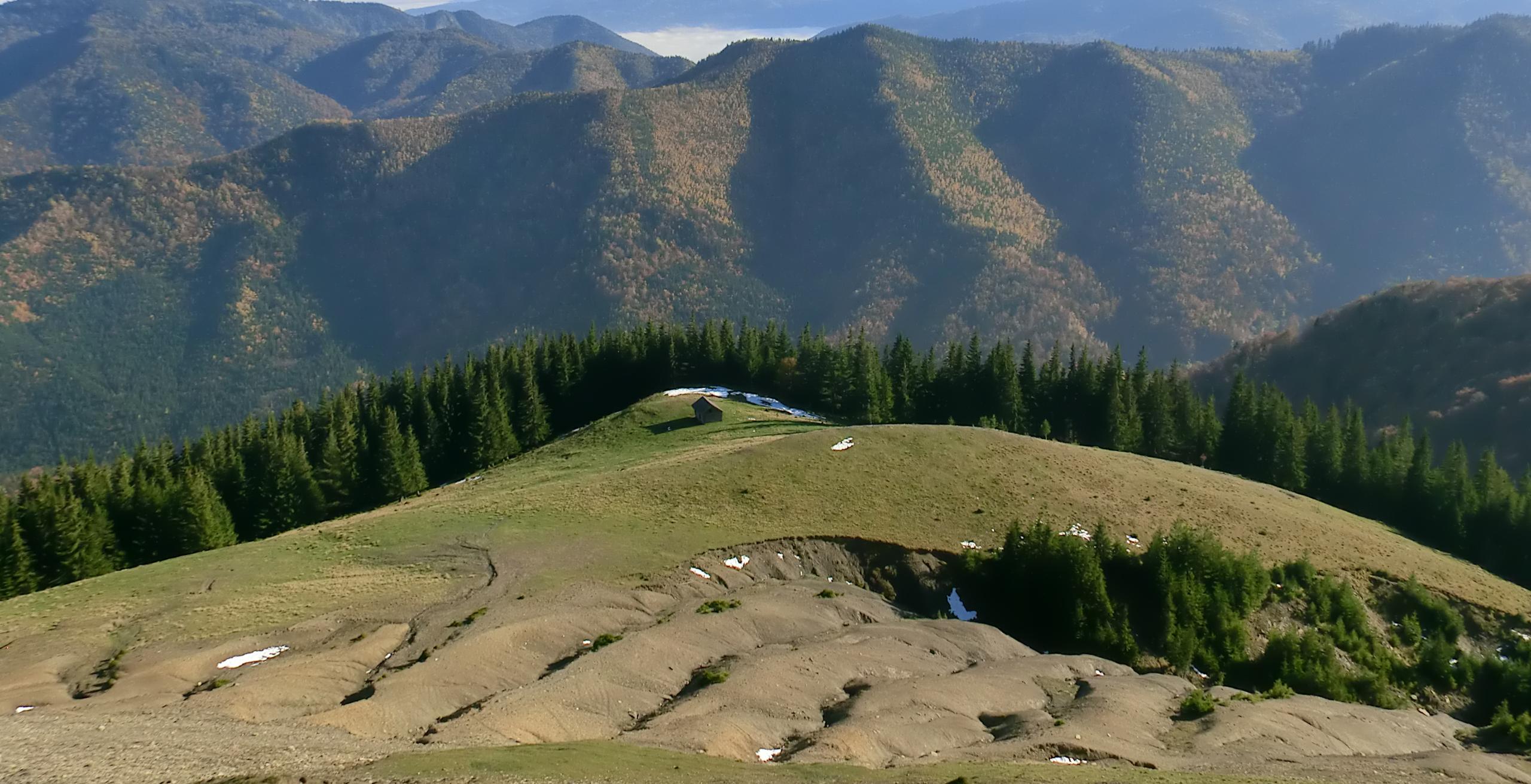 99 - 12.10.2013 - Un canton de lângă Stâna Hăuleştenilor - Tură Muntele Coza