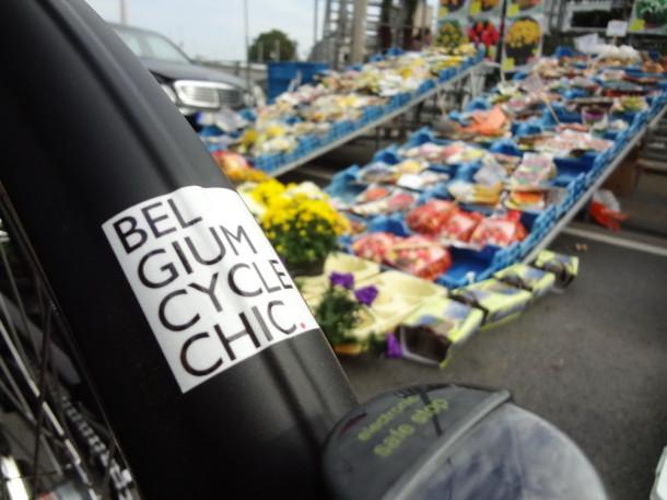 Belgia, cu bicicleta (11)