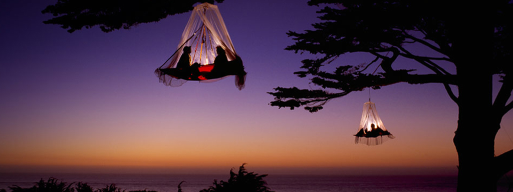 Tree-Camping-Banner