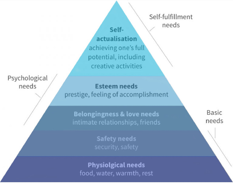 Piramida lui Maslow11