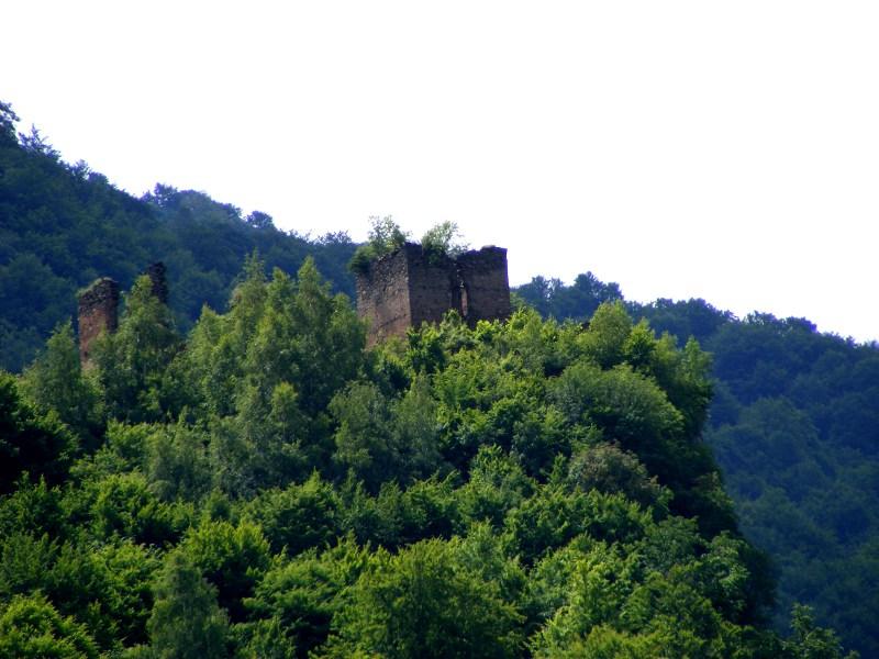 cetatea colt
