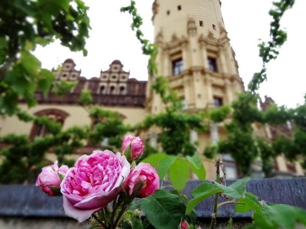 Schwerin (5)