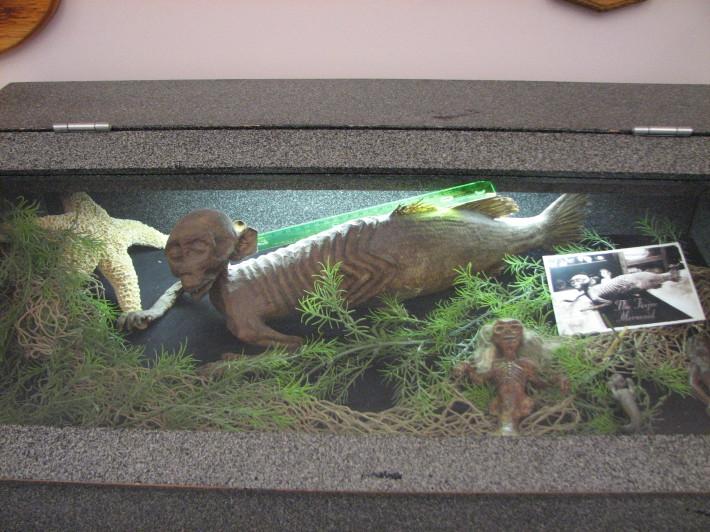Muzeul de criptozoologie, Foto: galleryhip.com