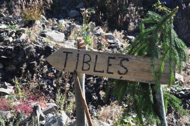 Tibles (1)