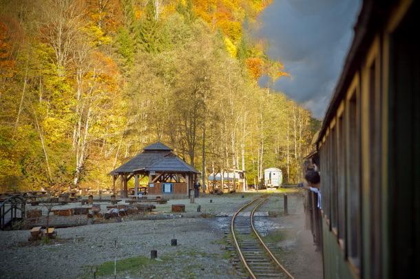 Mocanita, Valea Vaserului (8)