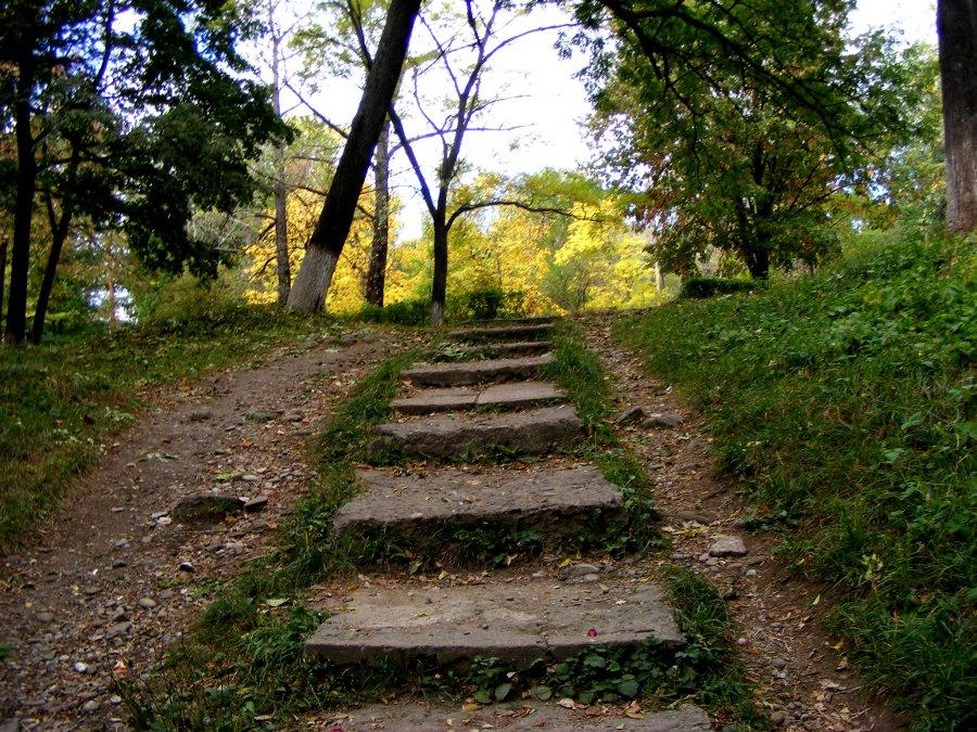 intrare cu trepte