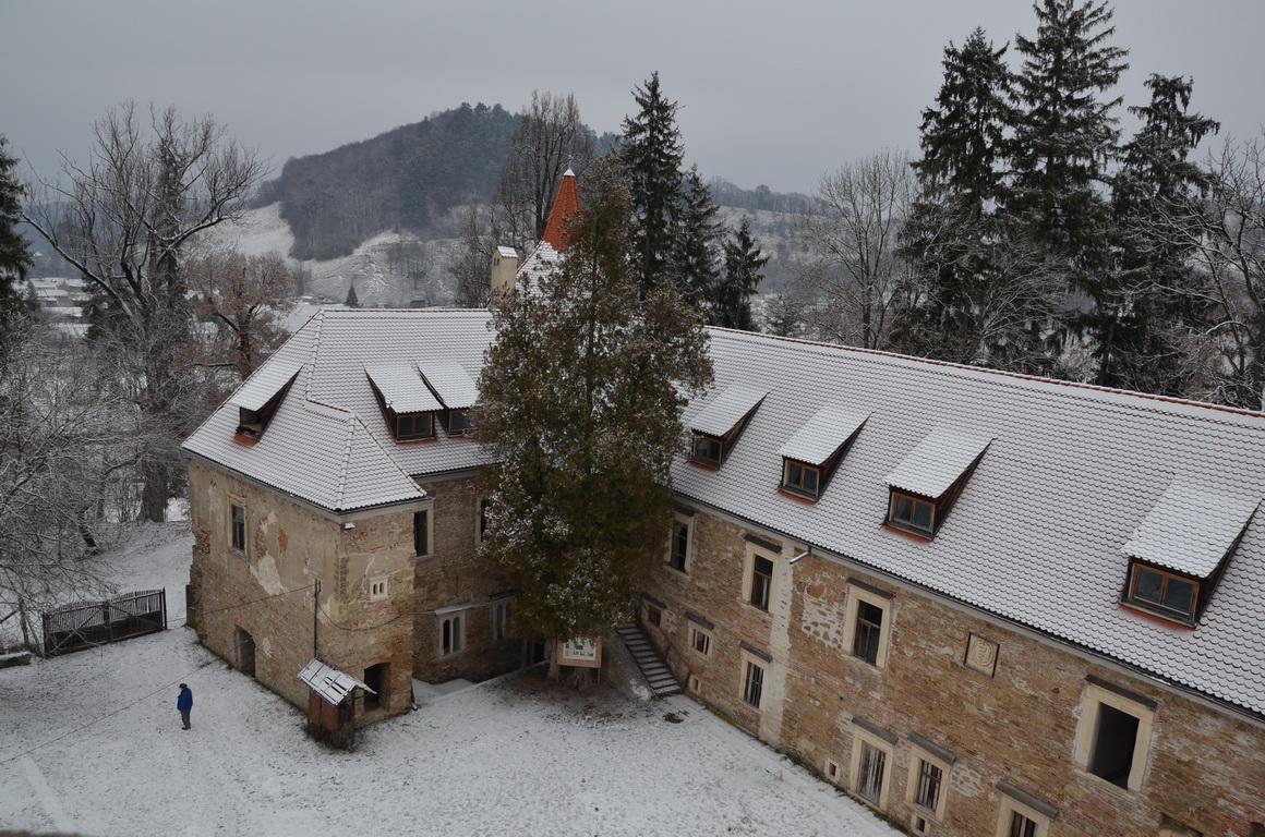 329 - Cris - Castelul Bethlen - 12.12.2013