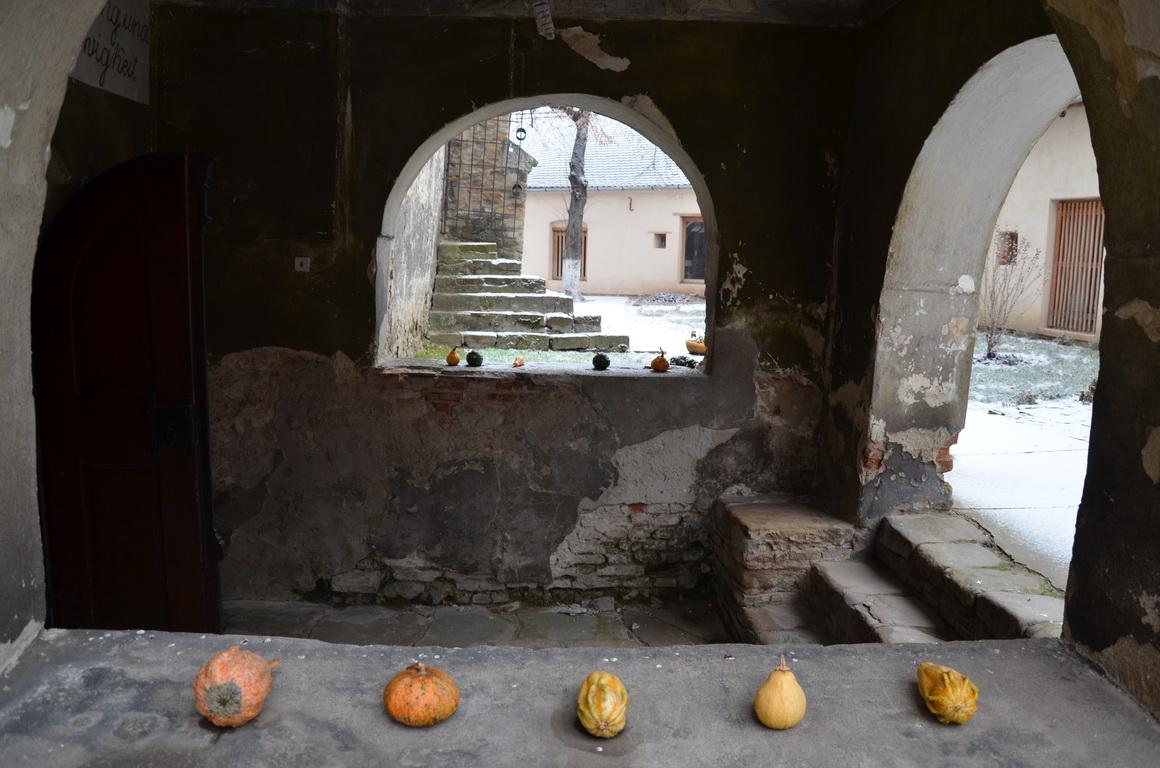 55 - Axente Sever - Biserica fortificata - 12.12.2013