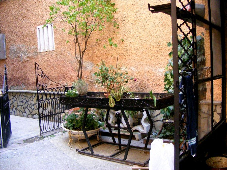 curte interioara vegetatie