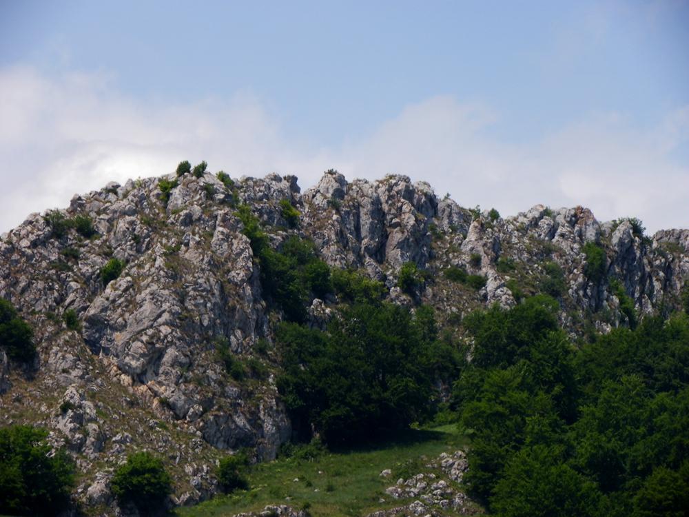 Piatra Craivii