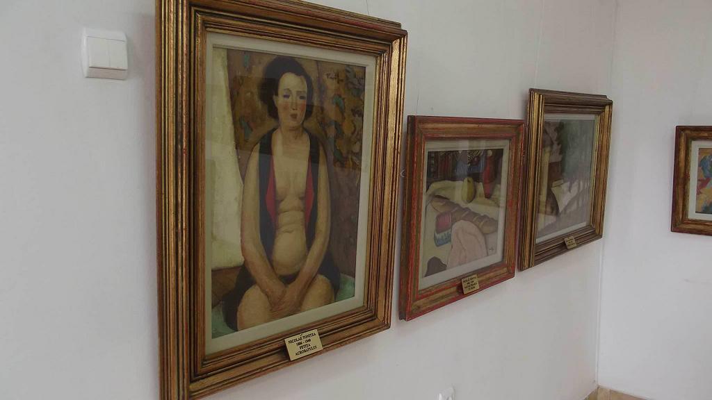 muzeul de arta topalu2