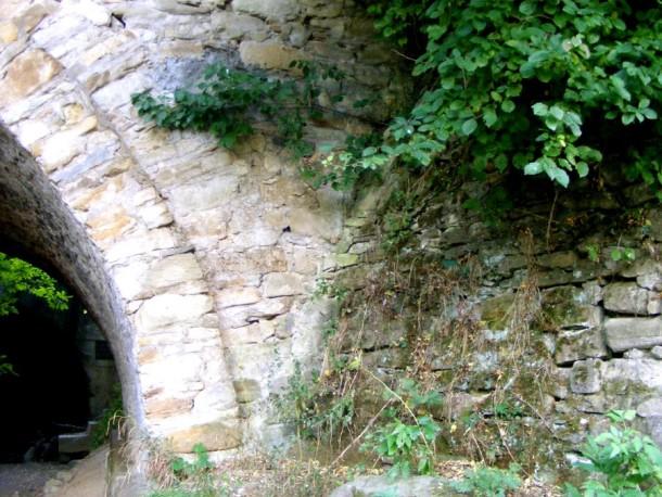 piatra si vegetatie pod borzesti