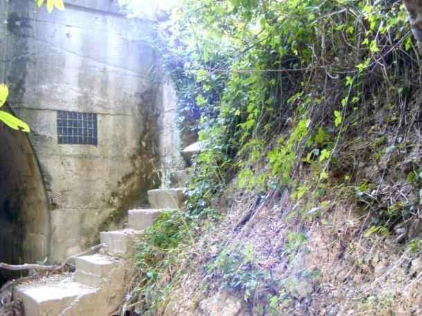 treptele podului garana