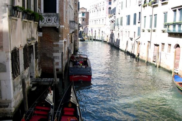 Barcute Venetia