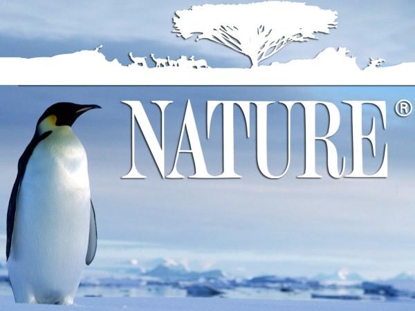 Nature - film, Foto: nzbtvseeker.com