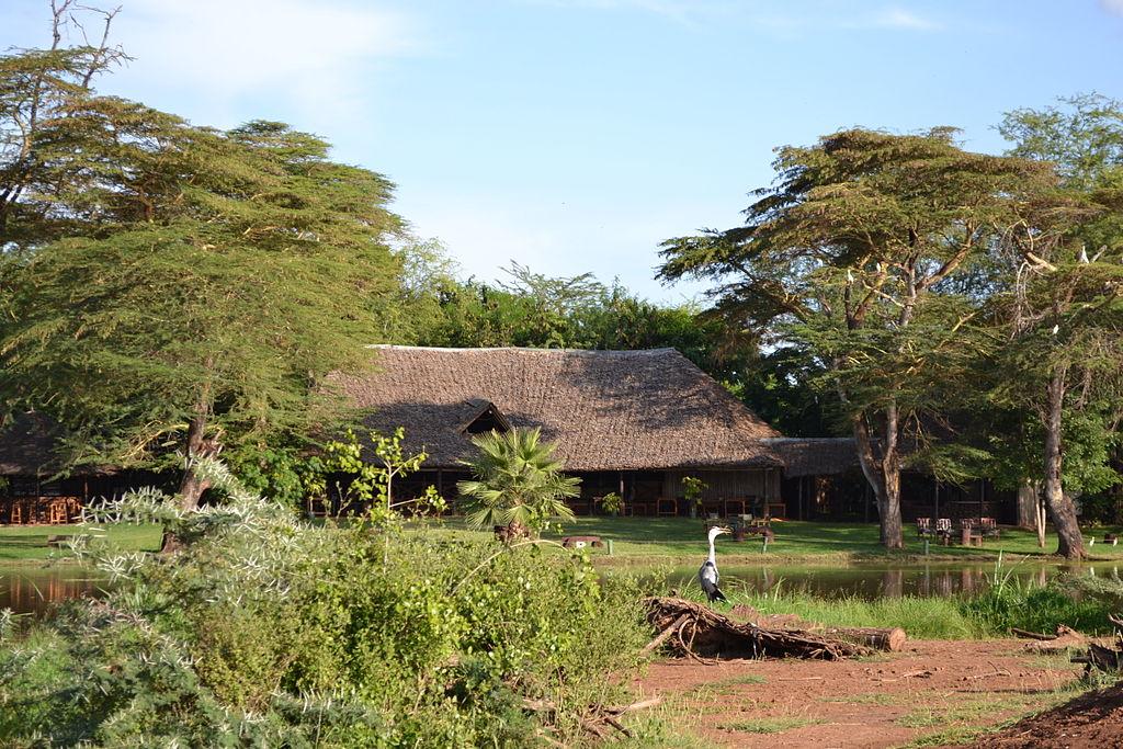 Amboseli pasari
