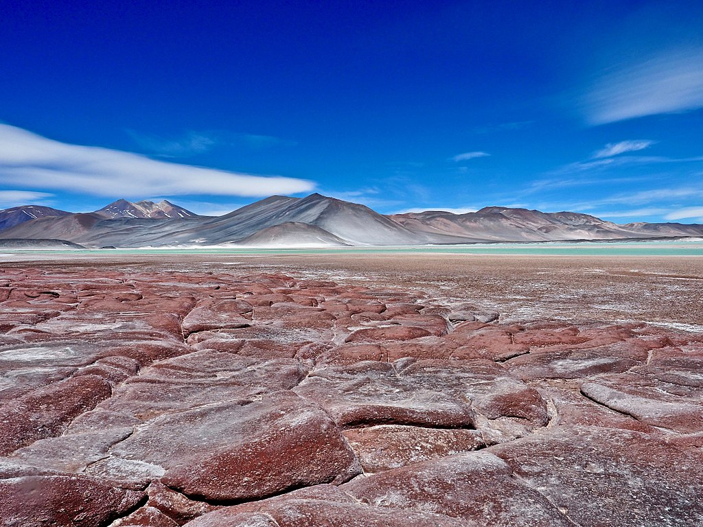 Atacama Desert11