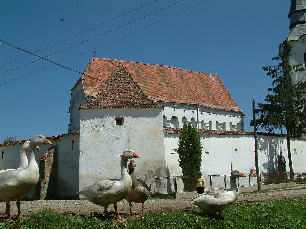 Biserica fortificată din Dârjiu